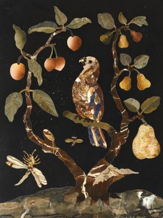 Panneau : Fruits et oiseaux--Giclee Print