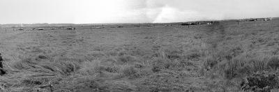 Panorama of Gliders Landed on D-Day on German Coastal Defences of the Atlantic Wall--Photographic Print