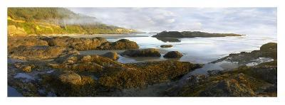 Panorama of Neptune Beach with exposed tide pools at low tide, Oregon-Tim Fitzharris-Art Print