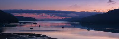 Panorama of Queen Charlotte Sound at Dawn with Pink Sky and Anchored Boats, Okiwa Bay-Garry Ridsdale-Photographic Print