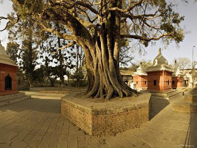 Panorama Produced by Joining Several Images, at One of the Holiest Hindu Sites, Kathmandu-Don Smith-Photographic Print