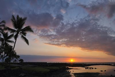 Panorama Sunset with Palms, Keauhou, Hawaii-Alvis Upitis-Photographic Print