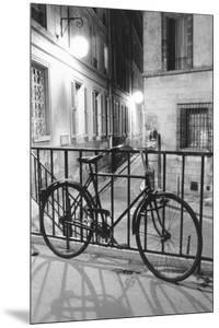 Bicycle against railing, Paris, France by Panoramic Images