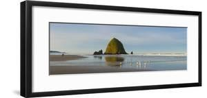 Flock of birds standing on Cannon Beach with Haystack Rock in background, Oregon, USA by Panoramic Images