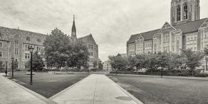 Gasson Hall at Boston College in Chestnut Hill near Boston, Massachusetts, USA by Panoramic Images