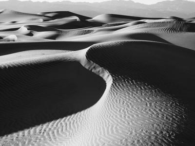 Sand dunes in a desert, Mesquite Flat Dunes, Death Valley National Park, California, USA
