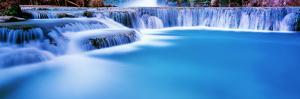 Waterfall in a forest, Mooney Falls, Havasu Canyon, Havasupai Indian Reservation, Grand Canyon N... by Panoramic Images