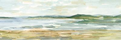 https://imgc.artprintimages.com/img/print/panoramic-seascape-i_u-l-q1bhhd20.jpg?artPerspective=n
