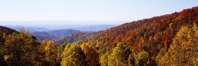 https://imgc.artprintimages.com/img/print/panoramic-view-of-hilly-area-covered-by-forest-blue-ridge-parkway-north-carolina-usa_u-l-q1gkkod0.jpg?p=0