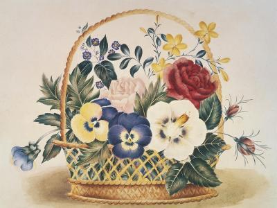 Pansies in a Basket--Giclee Print