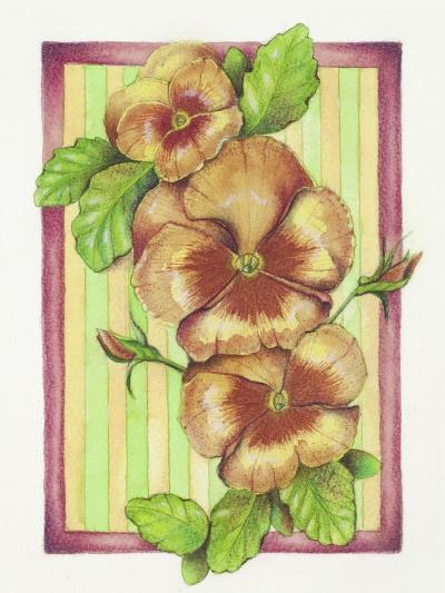 Pansies-Deborah Kopka-Giclee Print