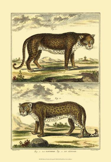 Panther and Leopard-Denis Diderot-Art Print