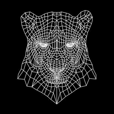 https://imgc.artprintimages.com/img/print/panther-head-black-mesh_u-l-pw4gb80.jpg?p=0