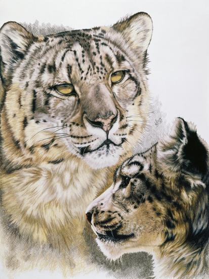 Panthera Uncia-Barbara Keith-Giclee Print