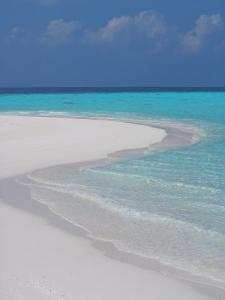 Empty Sandy Beach, Maldives, Indian Ocean by Papadopoulos Sakis