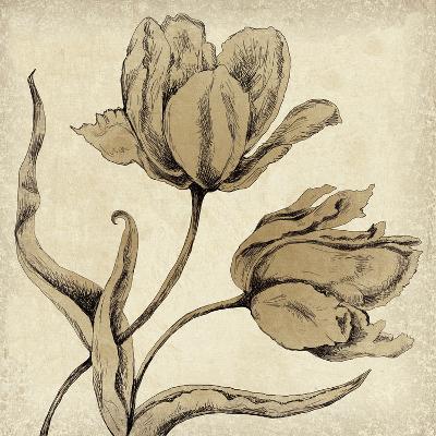 Paper Tulip II-Maria Mendez-Giclee Print