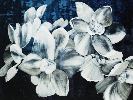 Paper Whites-Kari Taylor-Giclee Print