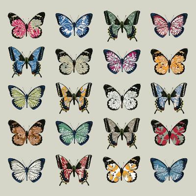Papillon, 2008-Sarah Hough-Giclee Print