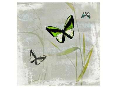 Papillon V--Art Print