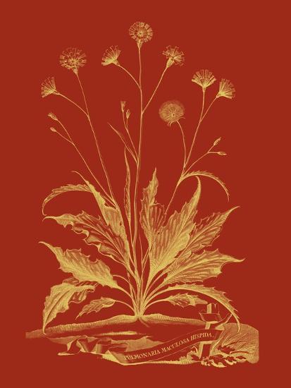 Paprika Bouquet III-Vision Studio-Art Print