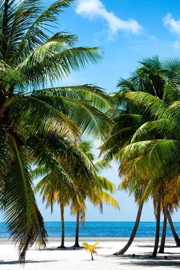 Paradise Beach - Florida - USA-Philippe Hugonnard-Photographic Print