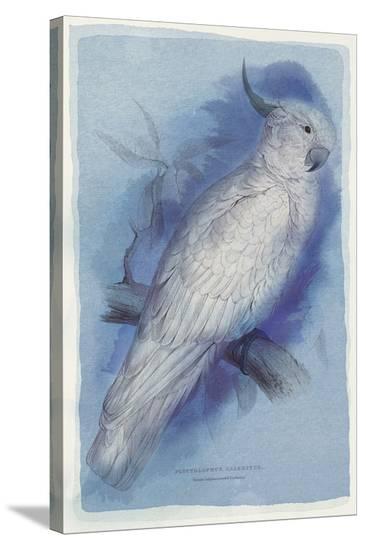 Paradise Blue I-Maria Mendez-Stretched Canvas Print