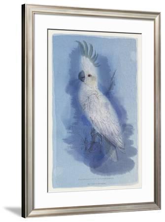 Paradise Blue II-Maria Mendez-Framed Giclee Print