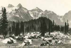Paradise Camp, Rainier National Park