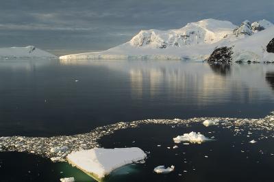Paradise Harbor, Antarctica-Natalie Tepper-Photographic Print