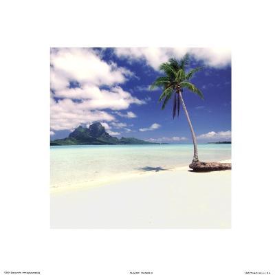 Paradise III--Art Print