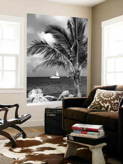 Paradise Palm Tree with a Sailboat on the Ocean - Florida-Philippe Hugonnard-Wall Mural