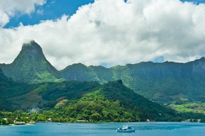 Paradise View of Moorea Islands, Cook's Bay, French Polynesia-mffoto-Photographic Print