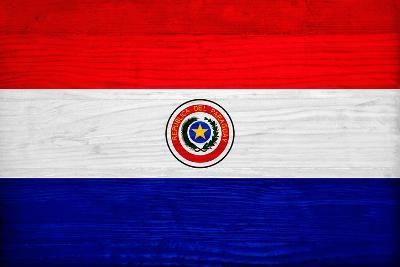 Paraguay Flag Design with Wood Patterning - Flags of the World Series-Philippe Hugonnard-Art Print