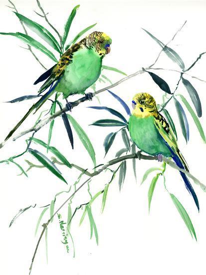 Parakeets Budgies-Suren Nersisyan-Art Print