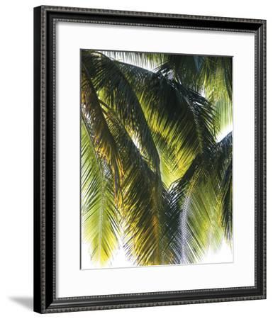 Parasol-Gaetan Caron-Framed Giclee Print