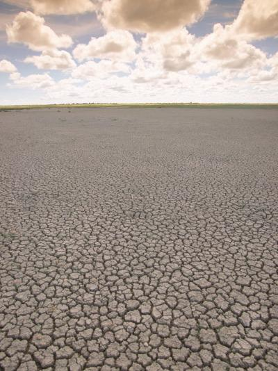 Parched Earth, Etosha National Park, Namibia-Walter Bibikow-Photographic Print