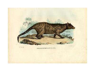 Pardine Genet, 1863-79-Raimundo Petraroja-Giclee Print