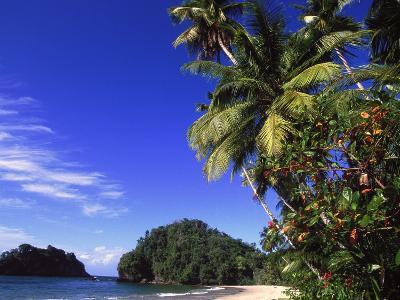 Paria Beach, Trinidad-Timothy O'Keefe-Photographic Print