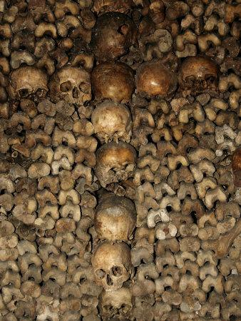 https://imgc.artprintimages.com/img/print/paris-catacombs-paris-france-europe_u-l-p9giue0.jpg?p=0