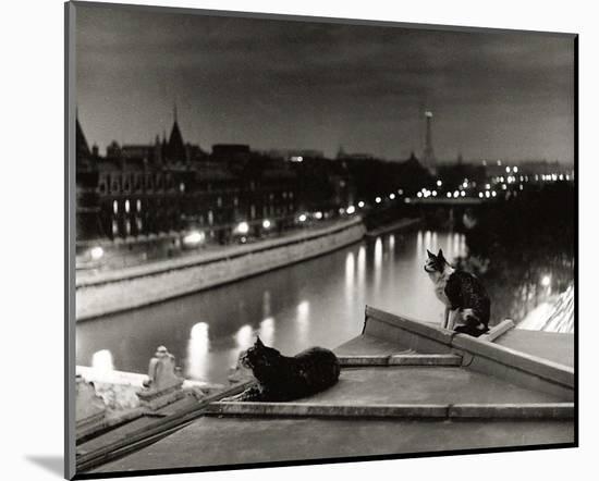 Paris, Cats at Night-Robert Doisneau-Mounted Art Print