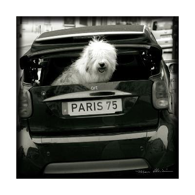 Paris Dog I-Marc Olivier-Art Print
