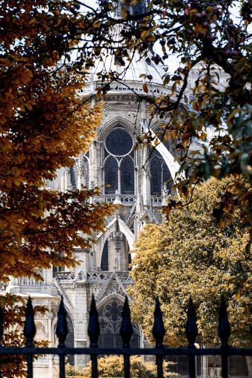 Paris Focus - Notre Dame Cathedral in Autumn-Philippe Hugonnard-Photographic Print