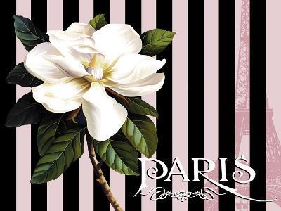 Paris Magnolias IV-Tina Lavoie-Giclee Print