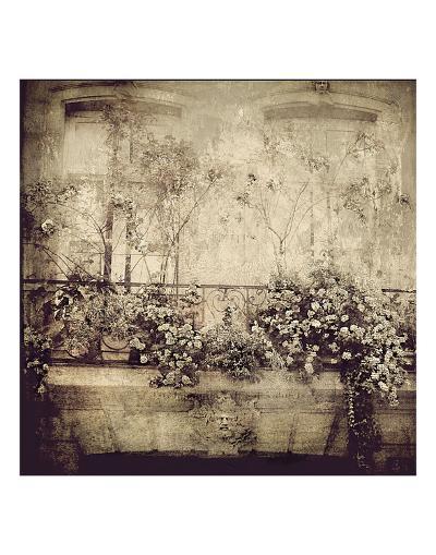Paris Window Garden-Dawne Polis-Art Print