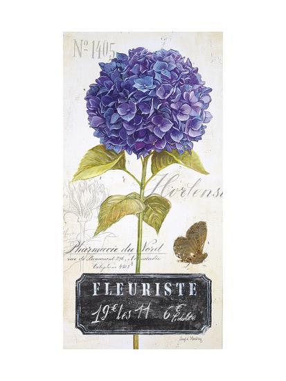 Parisian Hydrangea-Angela Staehling-Art Print