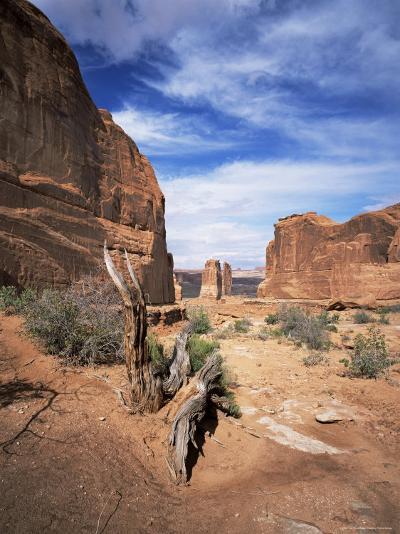 Park Avenue, Arches National Park, Moab, Utah, USA-Lee Frost-Photographic Print