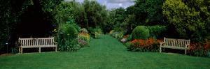 Park Bench in a Garden, Hillier Gardens, New Forest, Hampshire, England