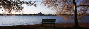Park Bench with Jefferson Memoria in Background, Tidal Basin, Potomac River, Washington DC