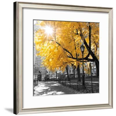 Park Pretty II-Assaf Frank-Framed Photographic Print