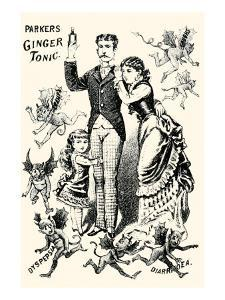 Parkers Ginger Tonic